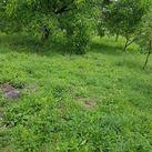 Teren de Vanzare, Zalau, Salaj - Foto 1