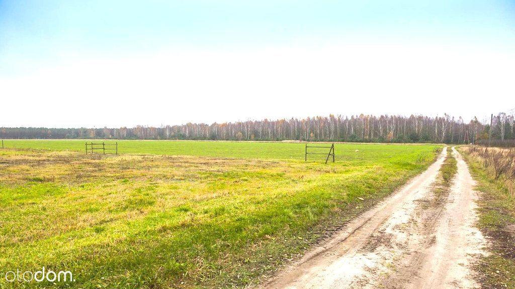 Działka na sprzedaż, Puszcza Mariańska, żyrardowski, mazowieckie - Foto 6