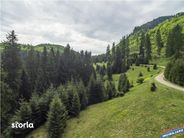 Teren de Vanzare, Brașov (judet), Piața Libertății - Foto 4