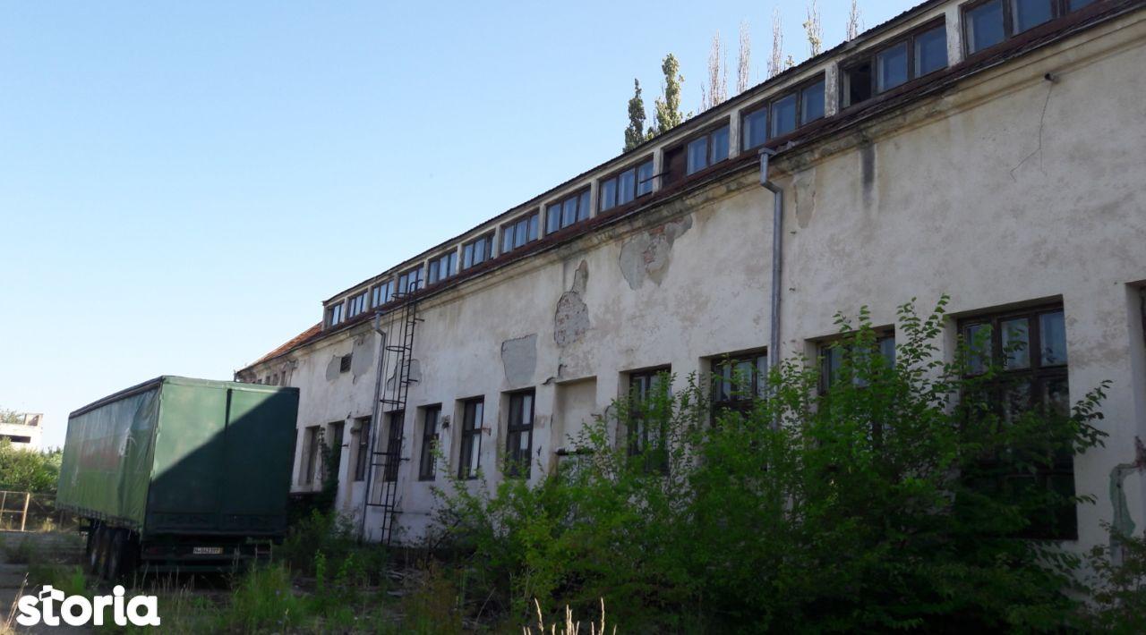 Depozit / Hala de vanzare, Caraș-Severin (judet), Strada Ardealului - Foto 2