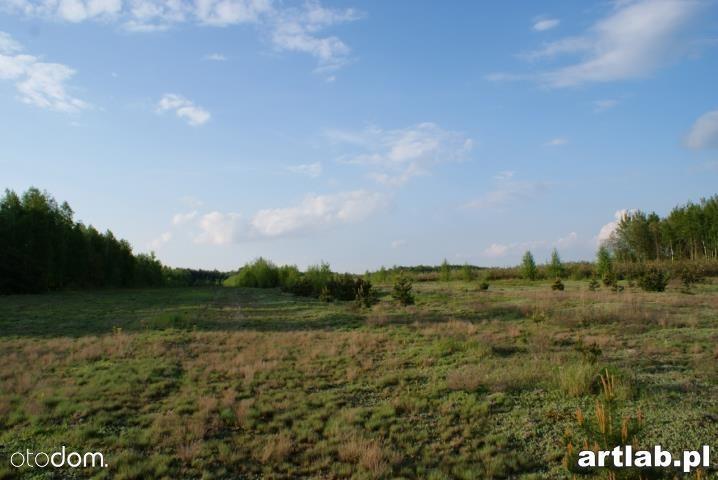 Działka na sprzedaż, Natalin, grójecki, mazowieckie - Foto 10
