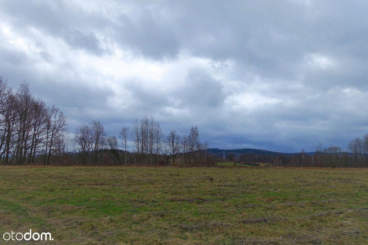 Działka na sprzedaż, Wojcieszyce, jeleniogórski, dolnośląskie - Foto 1