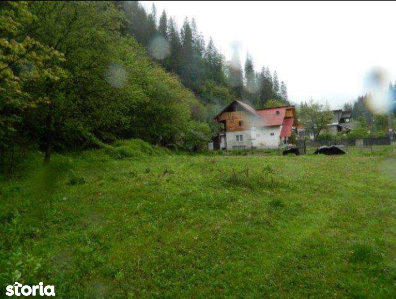 Teren de Vanzare, Vâlcea (judet), Voineasa - Foto 3