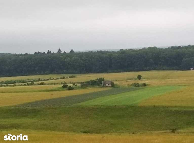 Teren de Vanzare, Suceava (judet), Lipoveni - Foto 8