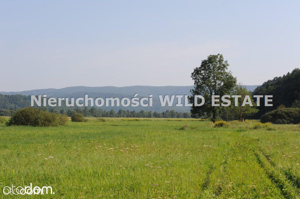 Działka na sprzedaż, Lesko, leski, podkarpackie - Foto 4