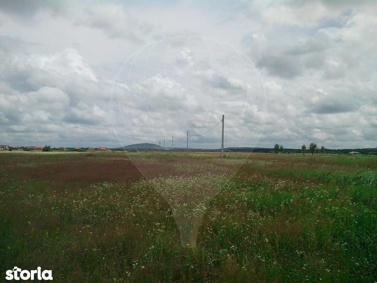 Teren de Vanzare, Bihor (judet), Lamaitei - Foto 3