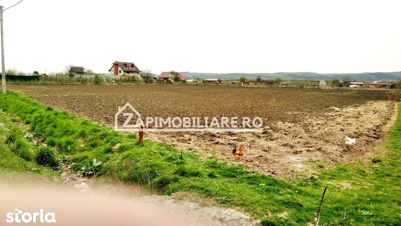 Teren de Vanzare, Mureș (judet), Recea - Foto 6