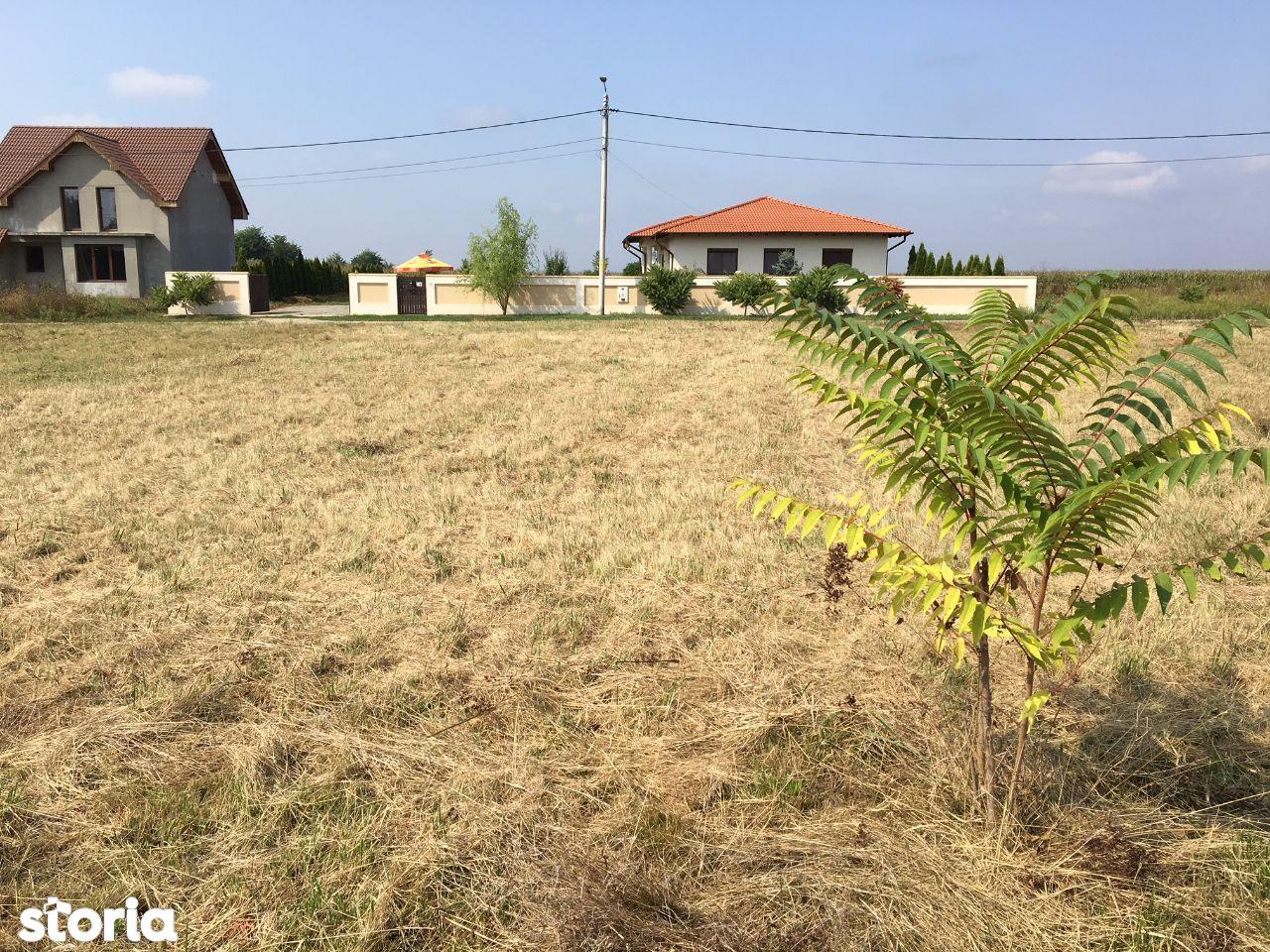 Teren de Vanzare, Satu Mare (judet), Dorolţ - Foto 5