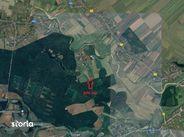 Teren de Vanzare, Ilfov (judet), Micşuneştii-Moară - Foto 2