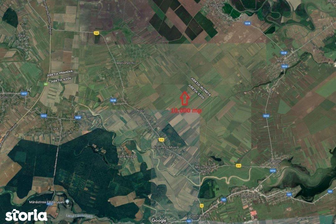 Teren de Vanzare, Ilfov (judet), Micşuneştii-Moară - Foto 7