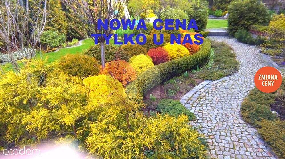 Dom na sprzedaż, Bielawa, dzierżoniowski, dolnośląskie - Foto 5