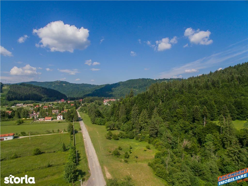 Teren de Vanzare, Brașov (judet), Săcele - Foto 16