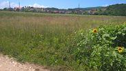 Teren de Vanzare, Alba Iulia, Alba - Foto 1