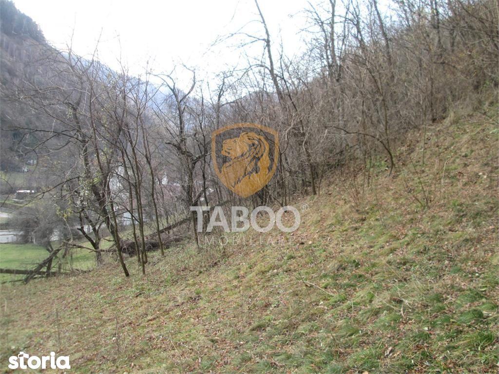 Teren de Vanzare, Alba (judet), Sebeş - Foto 7