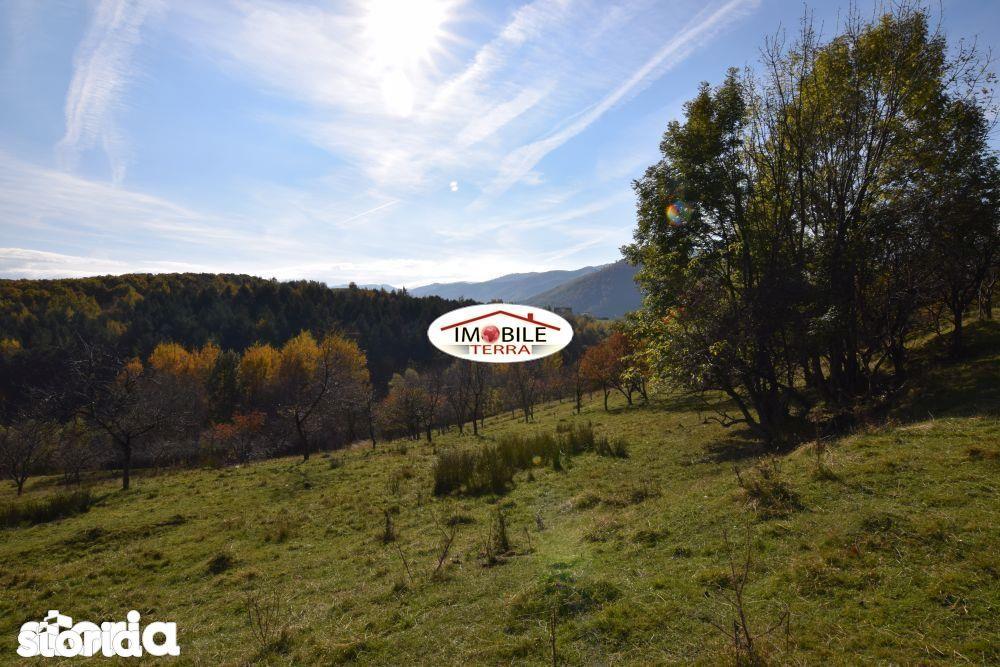 Teren de Vanzare, Cisnadioara, Sibiu - Foto 4