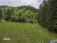 Teren de Vanzare, Brașov (judet), Piața Libertății - Foto 15