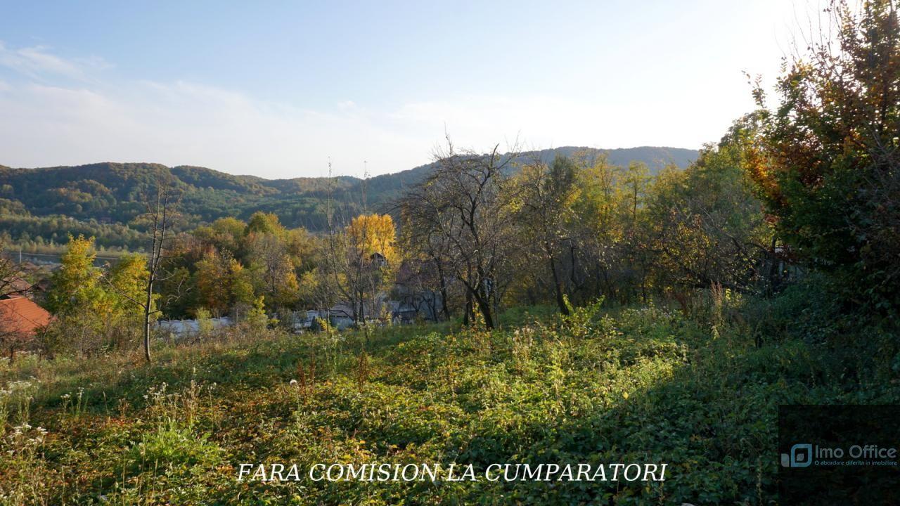 Teren de Vanzare, Vâlcea (judet), Priporu - Foto 12