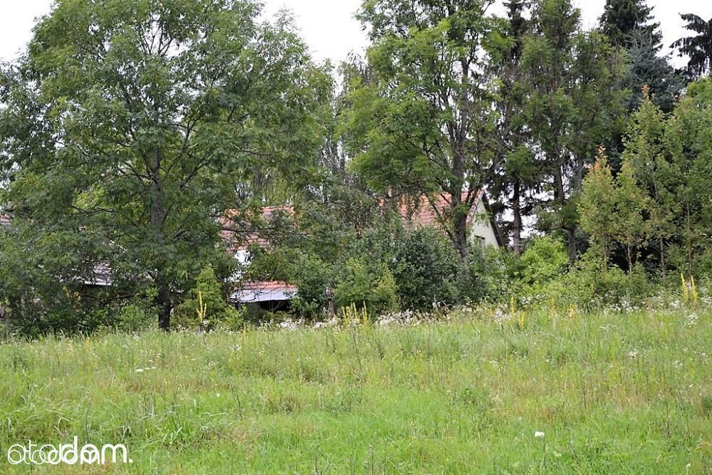 Dom na sprzedaż, Jurki, olecki, warmińsko-mazurskie - Foto 13