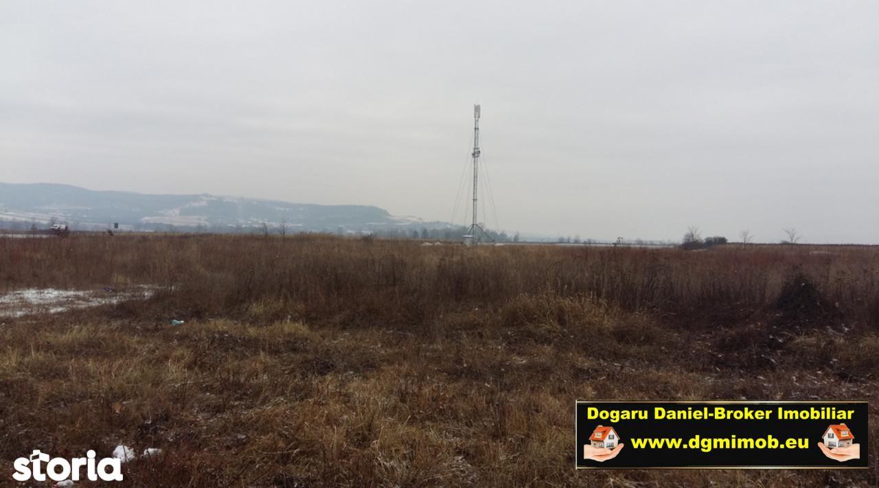 Teren de Vanzare, Hunedoara (judet), Dorobanți - Foto 3