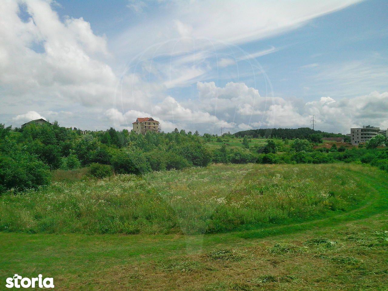 Teren de Vanzare, Bihor (judet), Drumul DC59 - Foto 4