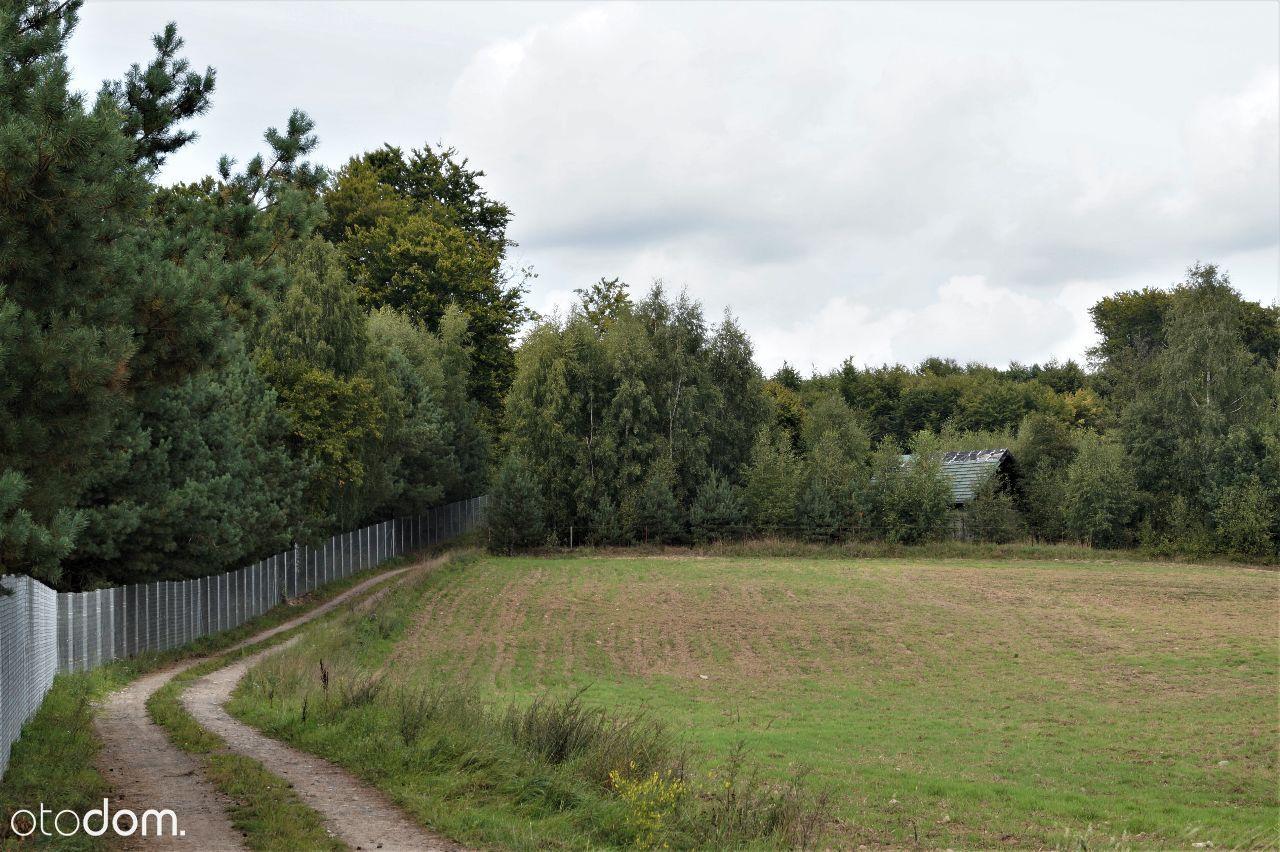 Działka na sprzedaż, Drzewina, gdański, pomorskie - Foto 1