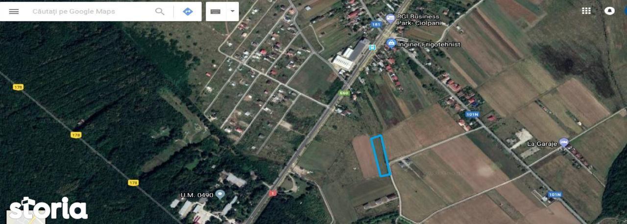 Teren de Vanzare, Ilfov (judet), Ciolpani - Foto 1