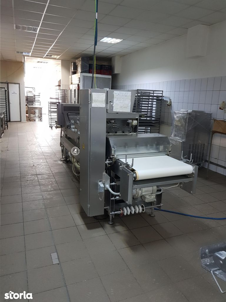 Depozit / Hala de vanzare, Iasi, Zona industriala - Foto 2