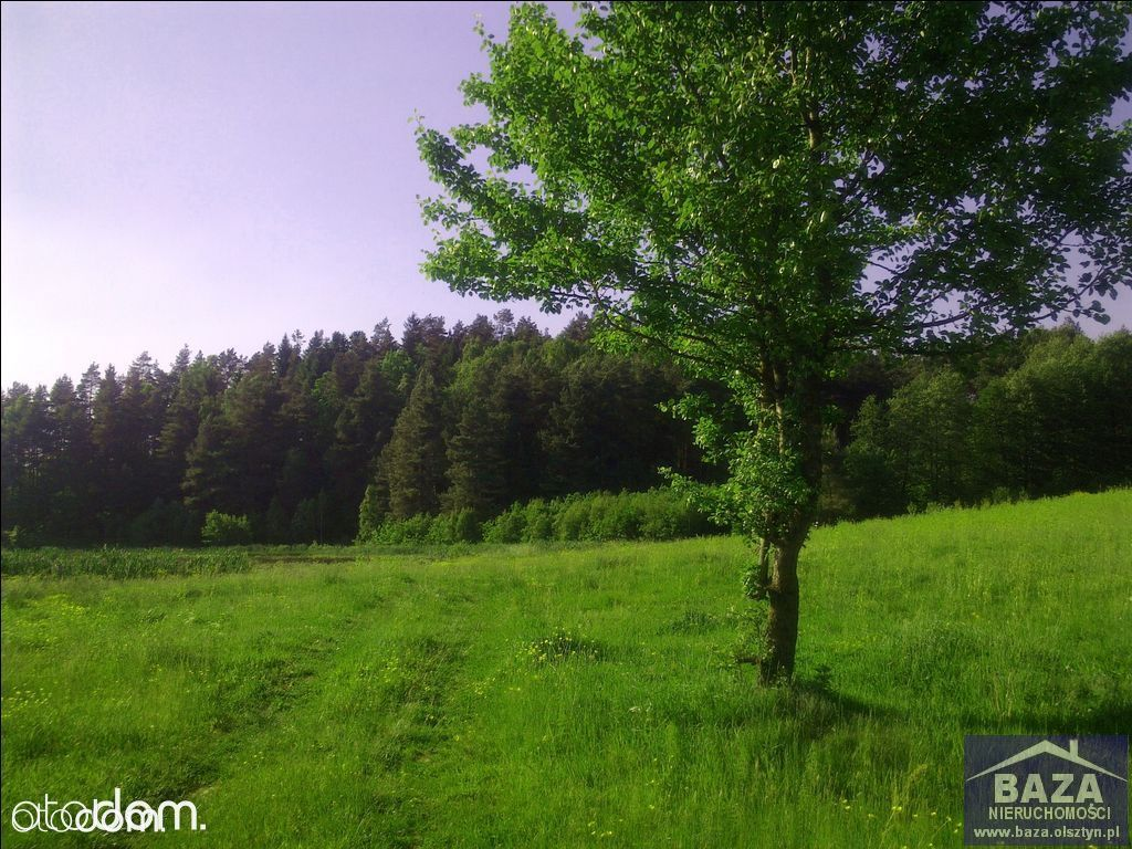 Działka na sprzedaż, Kochanówka, lidzbarski, warmińsko-mazurskie - Foto 1