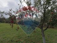 Teren de Vanzare, Maramureș (judet), Piatra - Foto 17