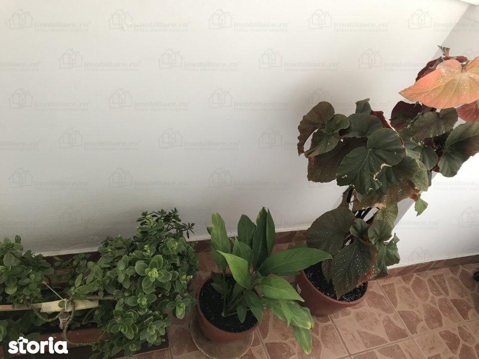 Apartament de inchiriat, București (judet), Calea Vitan - Foto 12