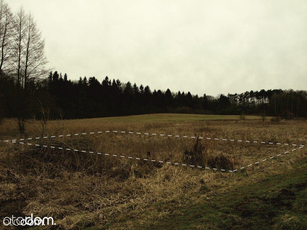 Działka na sprzedaż, Zielona Góra, lubuskie - Foto 1