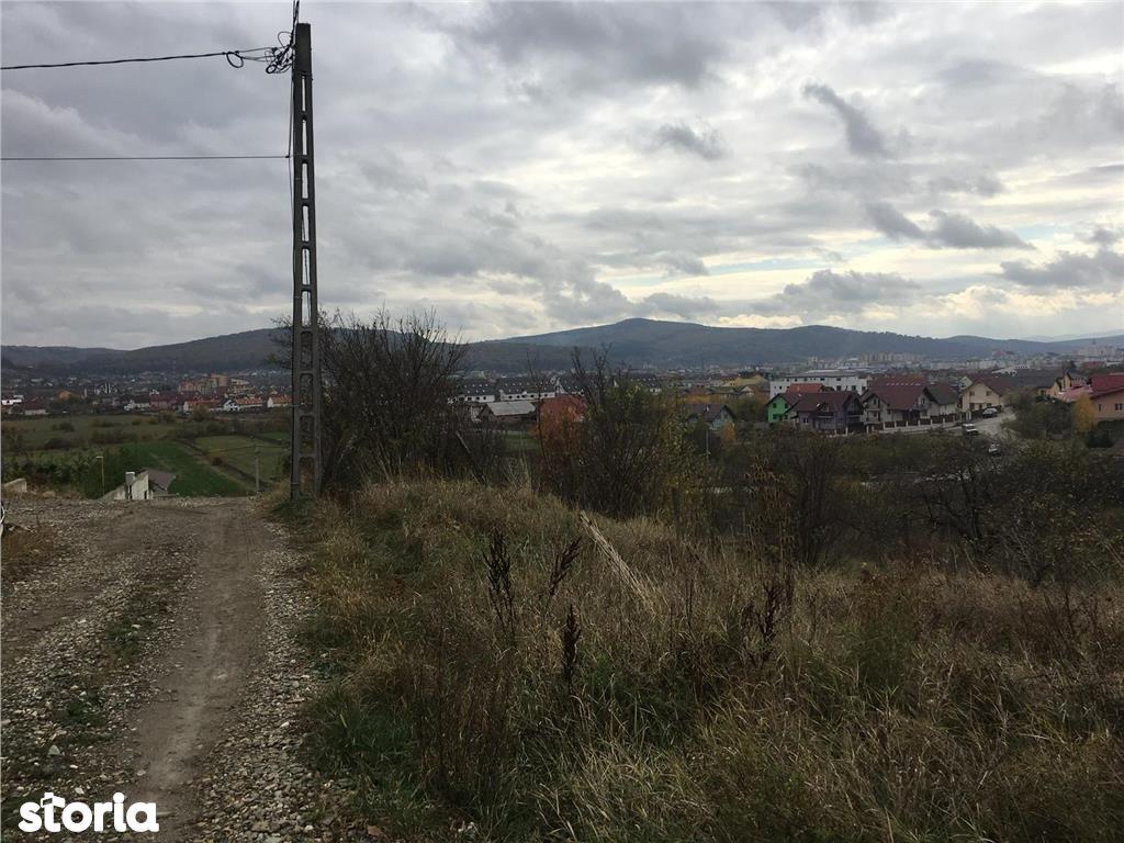 Teren de Vanzare, Bistrița-Năsăud (judet), Strada Ulmului - Foto 3