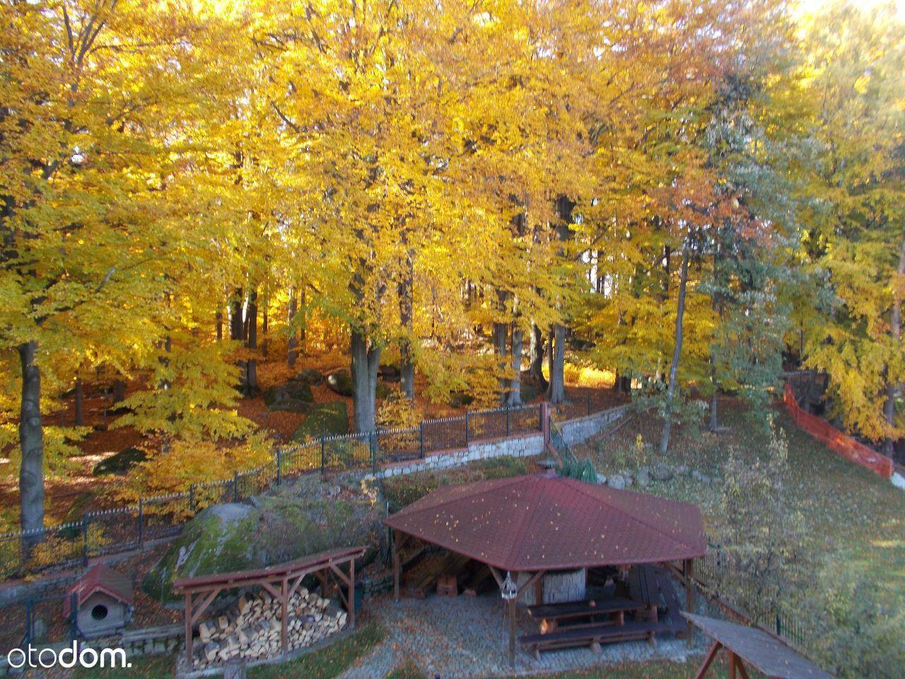 Dom na sprzedaż, Szklarska Poręba, jeleniogórski, dolnośląskie - Foto 18