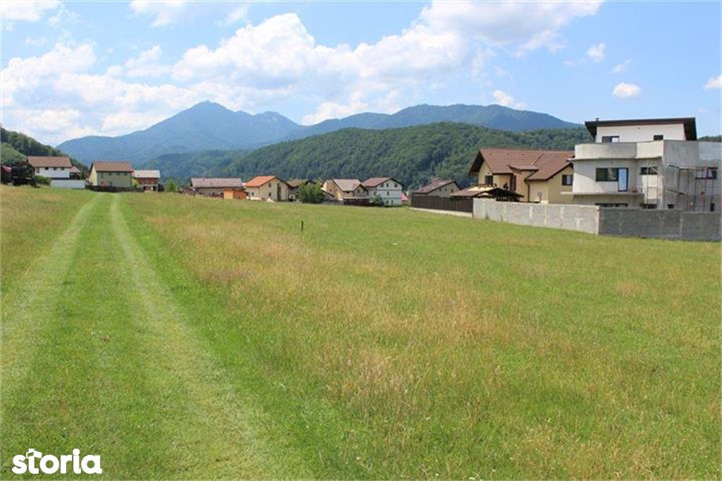 Teren de Vanzare, Brașov (judet), Săcele - Foto 1