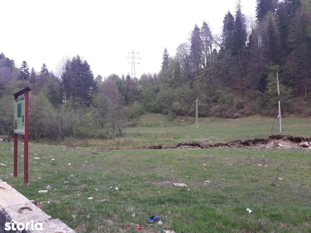Teren de Vanzare, Brașov (judet), Strada Piatra Mare - Foto 3