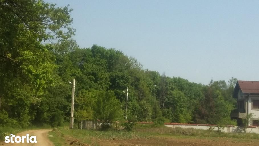 Teren de Vanzare, Balotesti, Bucuresti - Ilfov - Foto 1