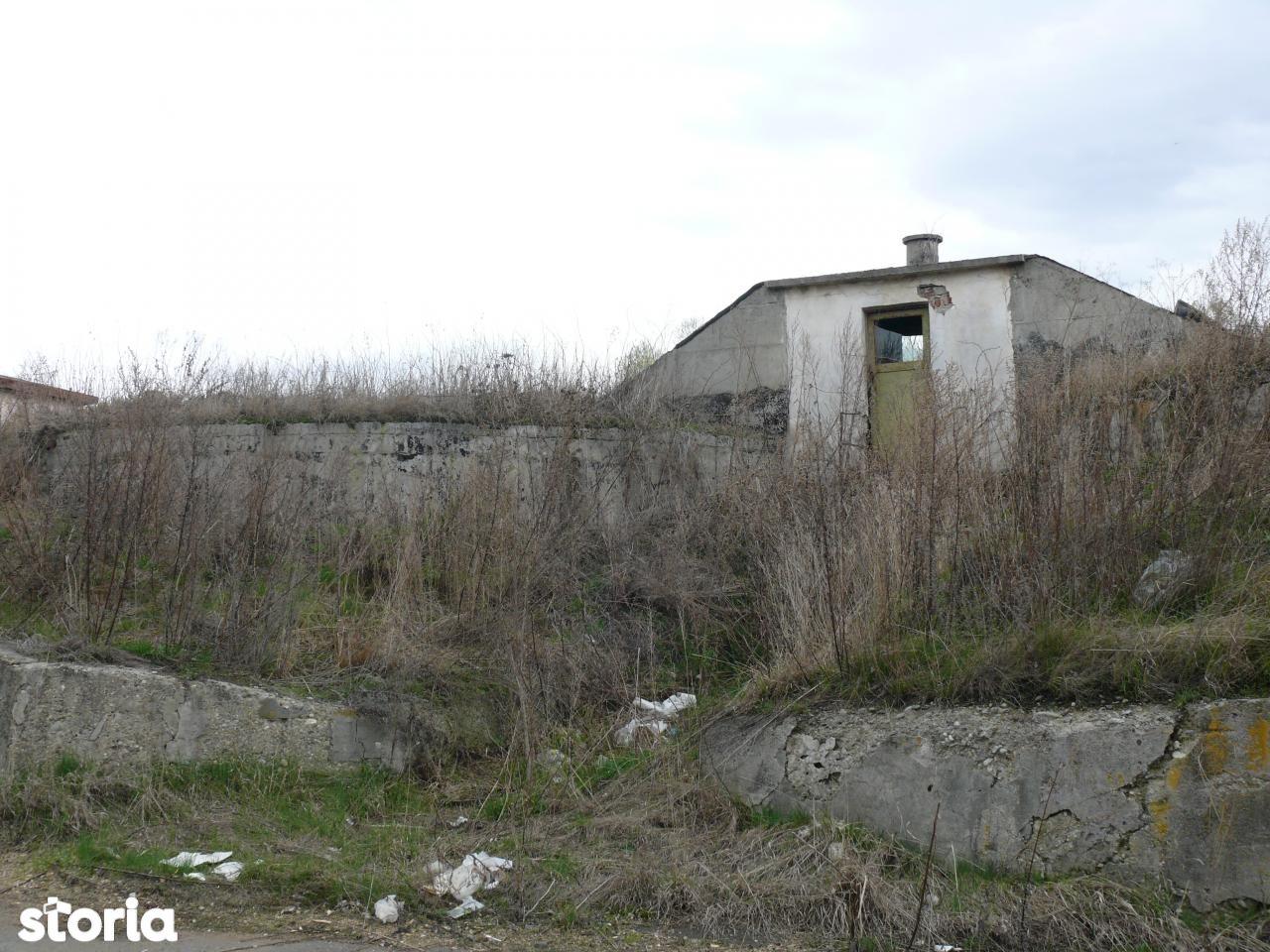 Depozit / Hala de vanzare, Harghita (judet), Topliţa - Foto 4