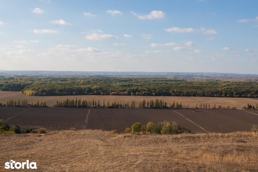 Teren de Vanzare, Bihor (judet), Tinca - Foto 1