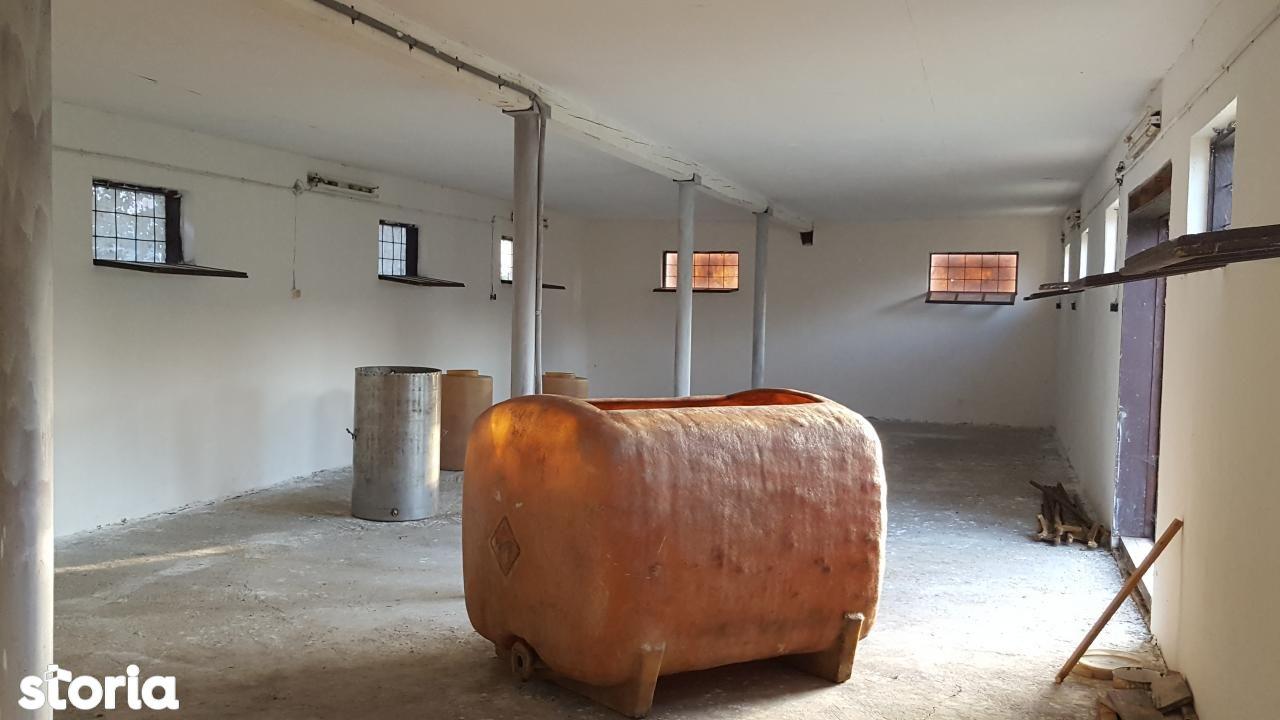 Casa de vanzare, Bihor (judet), Copăcel - Foto 5