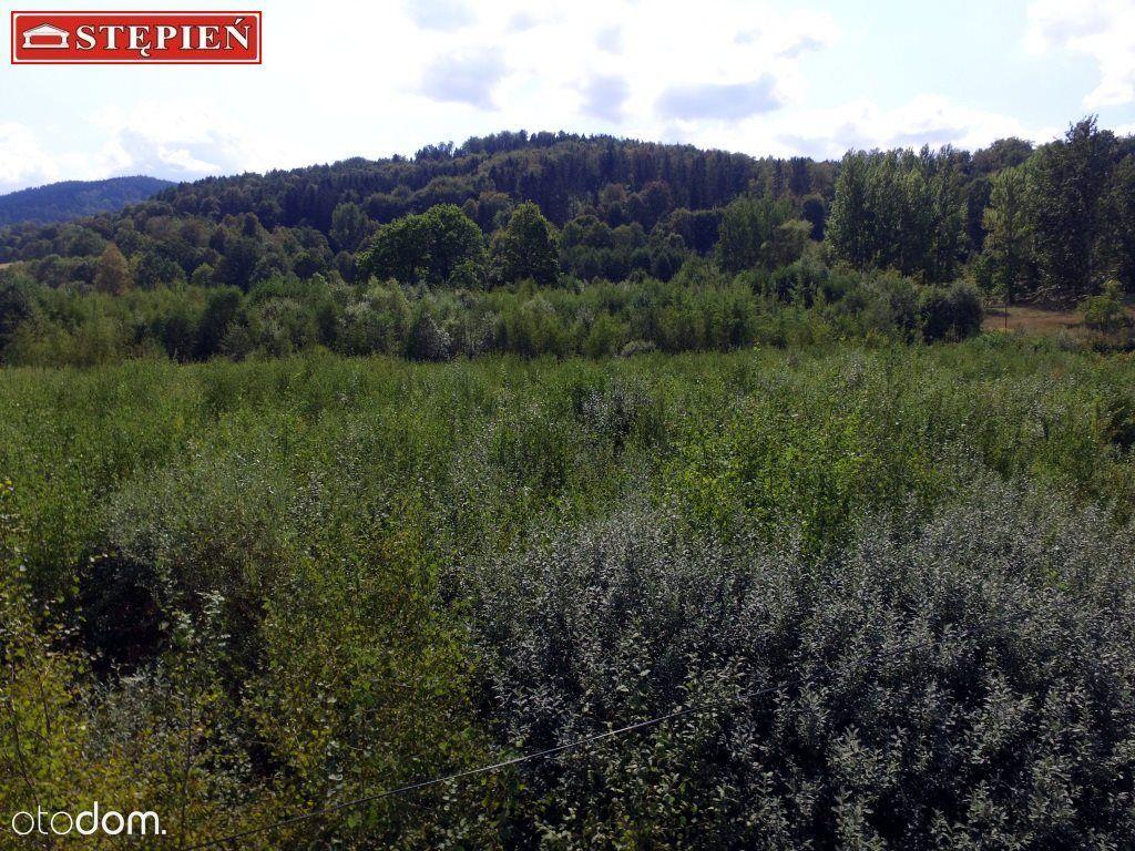 Działka na sprzedaż, Sosnówka, jeleniogórski, dolnośląskie - Foto 2