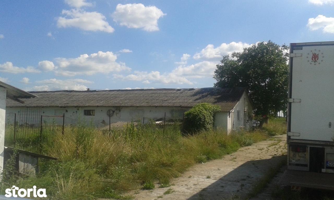 Depozit / Hala de vanzare, Caraș-Severin (judet), Berzovia - Foto 5