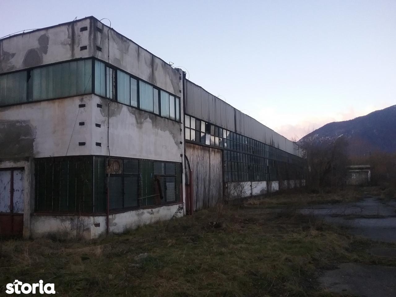 Depozit / Hala de vanzare, Brașov (judet), Măgura - Foto 3