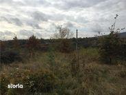 Teren de Vanzare, Bistrița-Năsăud (judet), Strada Ulmului - Foto 4