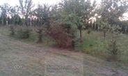 Dom na sprzedaż, Jakubów, miński, mazowieckie - Foto 13