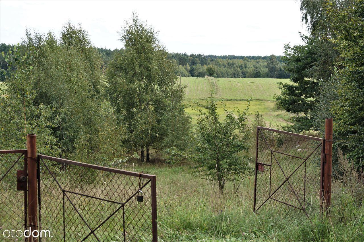 Działka na sprzedaż, Drzewina, gdański, pomorskie - Foto 11