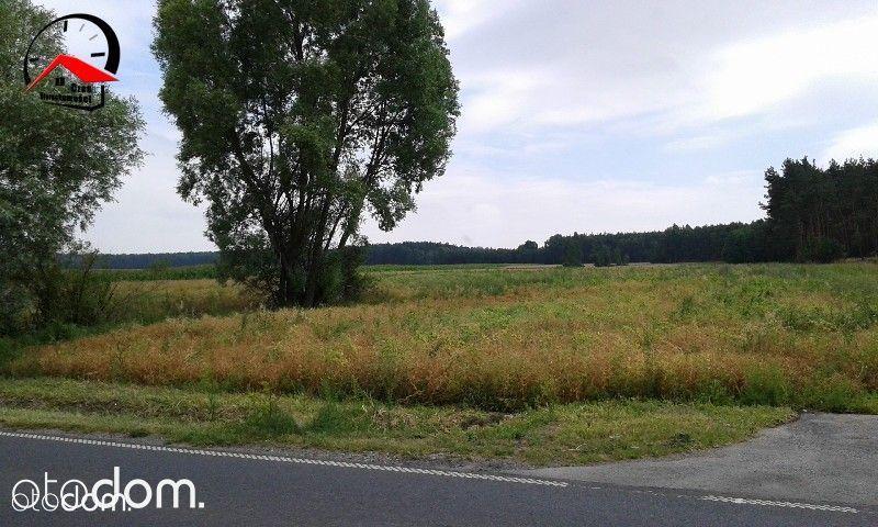 Działka na sprzedaż, Dąbrowa Biskupia, inowrocławski, kujawsko-pomorskie - Foto 3