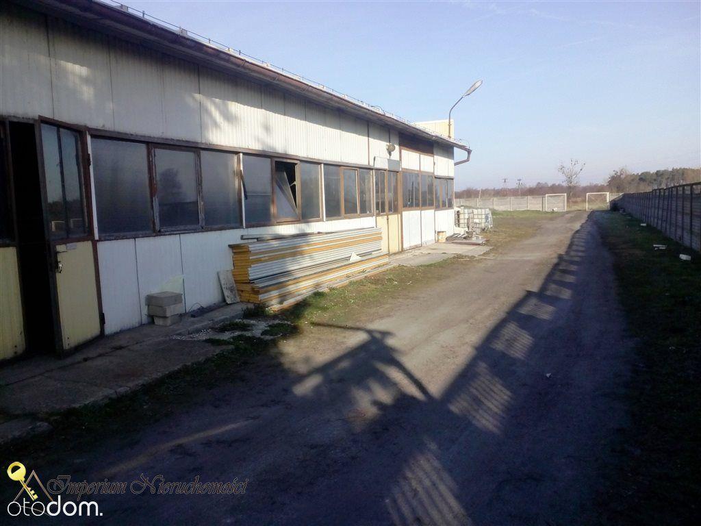Hala/Magazyn na wynajem, Ryczywół, obornicki, wielkopolskie - Foto 7