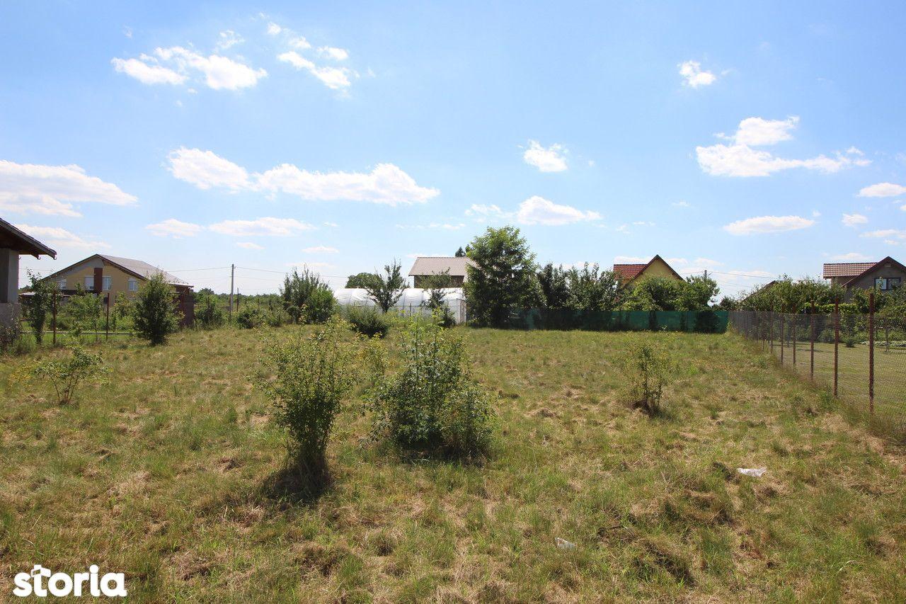 Teren de Vanzare, Timiș (judet), Drumul DJ609F - Foto 5