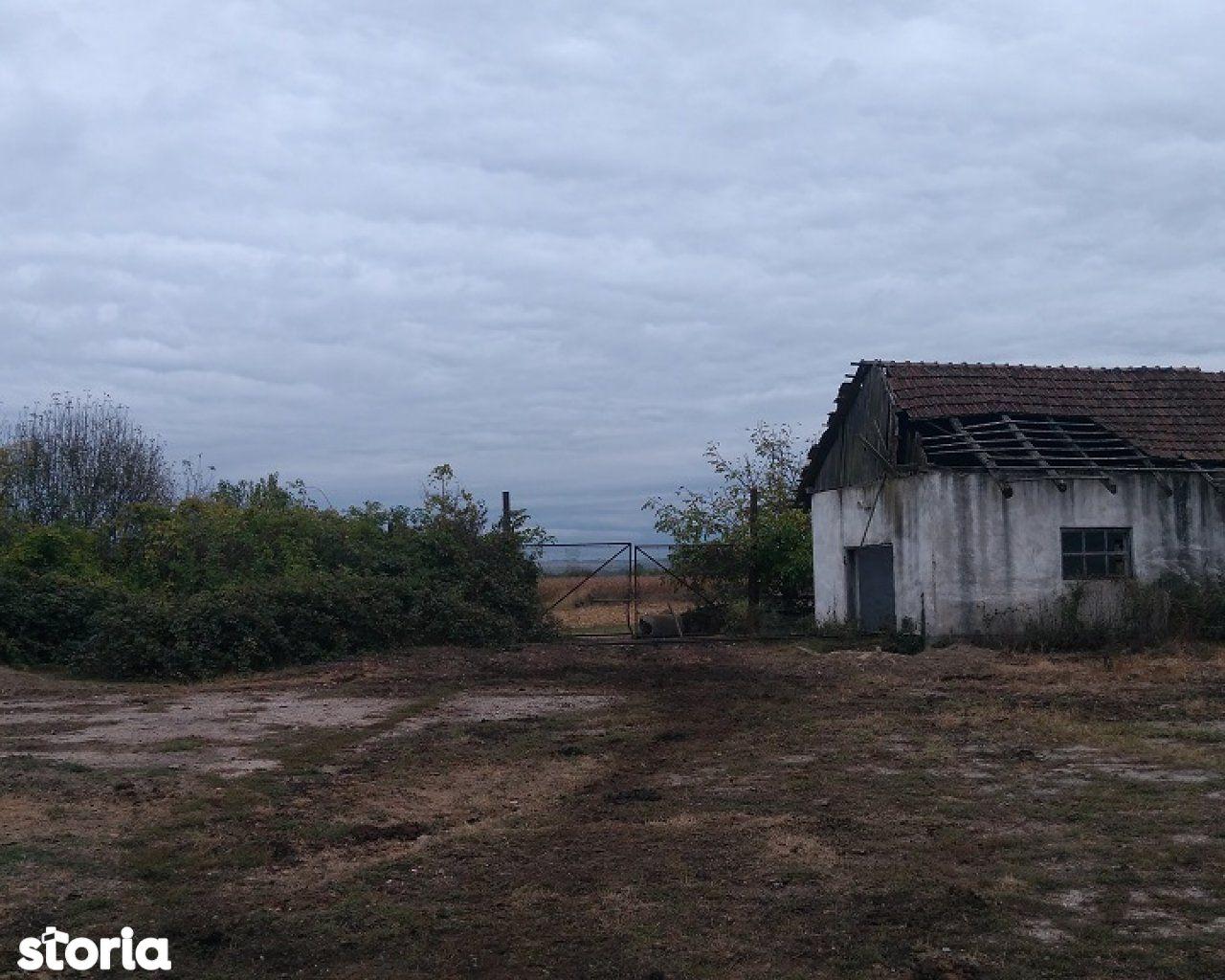 Teren de Vanzare, Maramureș (judet), Mireşu Mare - Foto 8