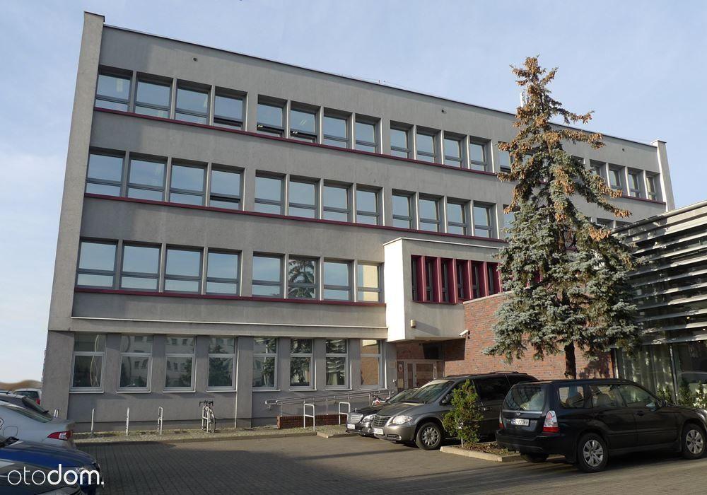 Lokal użytkowy na wynajem, Łódź, Polesie - Foto 11